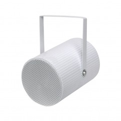 Projection Speaker