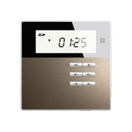 HS-835 Smart Home On Wall Music Player Panel Amplifier