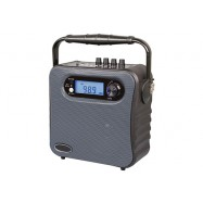 PP-336 Portable Wireless PA Amplifier with USB/SD/Recording/Bluetooth